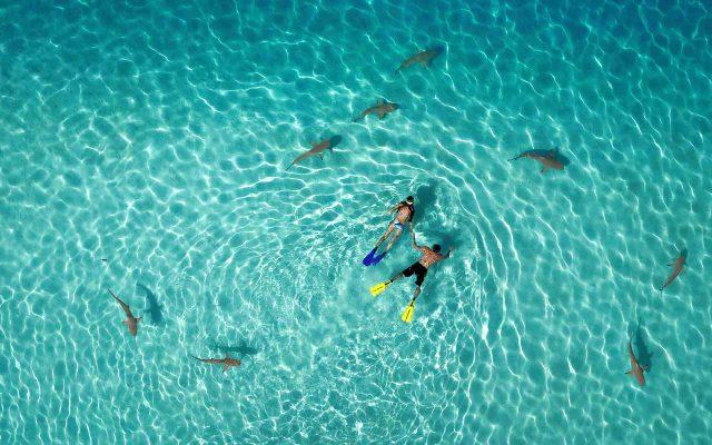 https://alugueseudrone.com.br/wp-content/uploads/2019/11/agua-drone-640x400.jpg