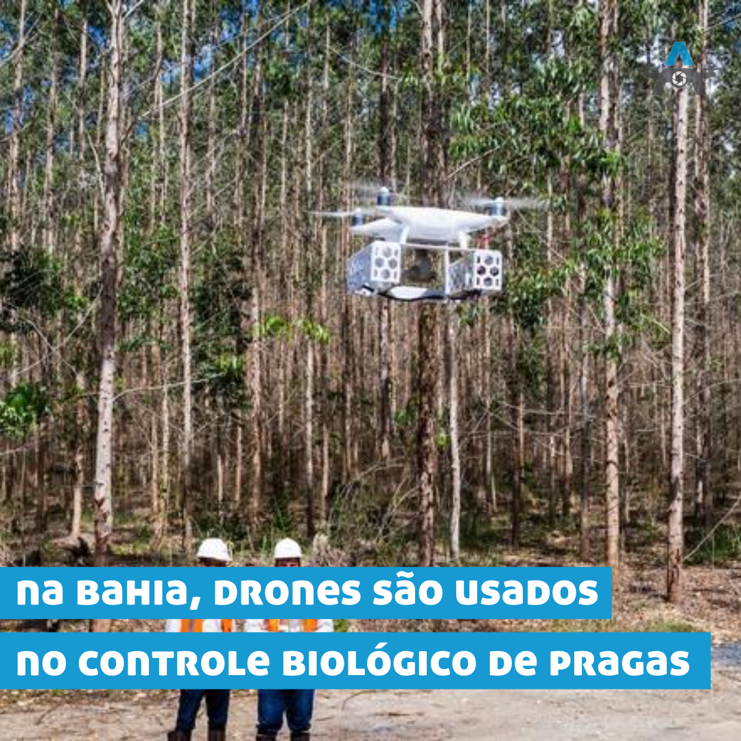 https://alugueseudrone.com.br/wp-content/uploads/2020/08/Blog-2.png